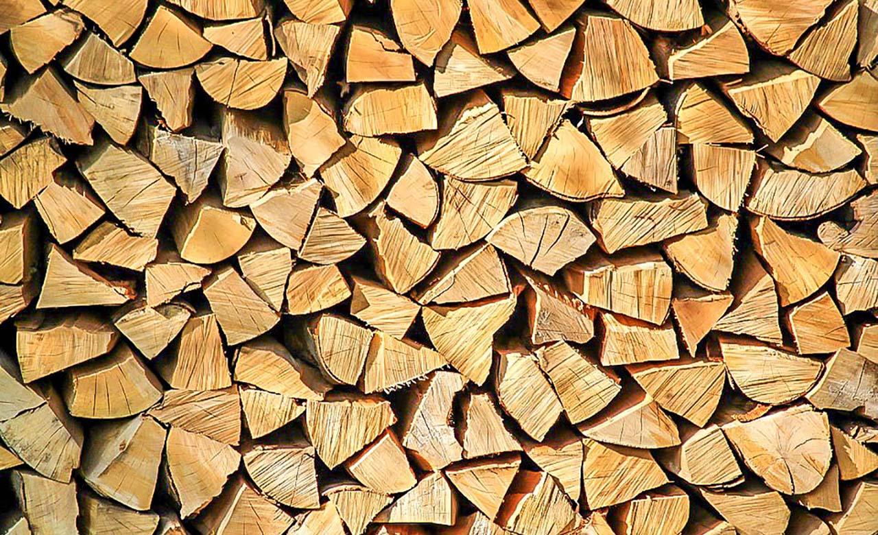 Exploitation du bois au gabon