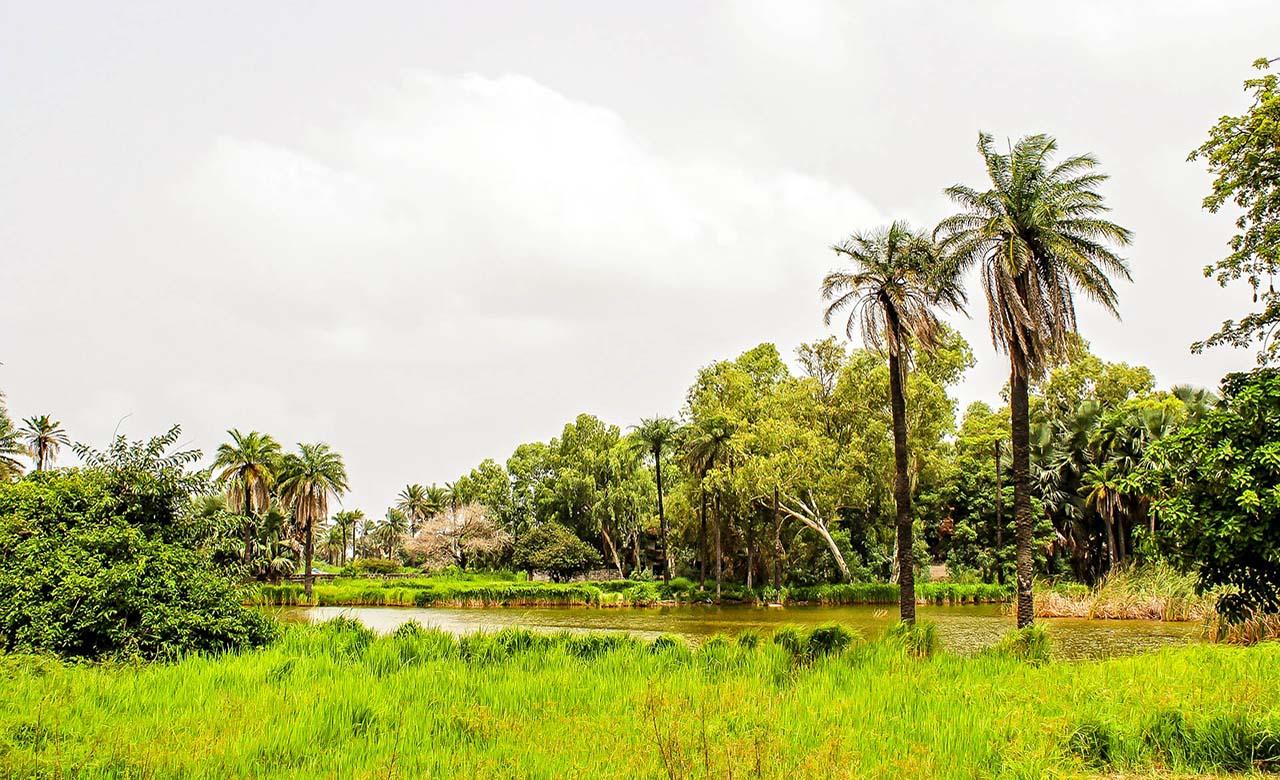 climat tropical