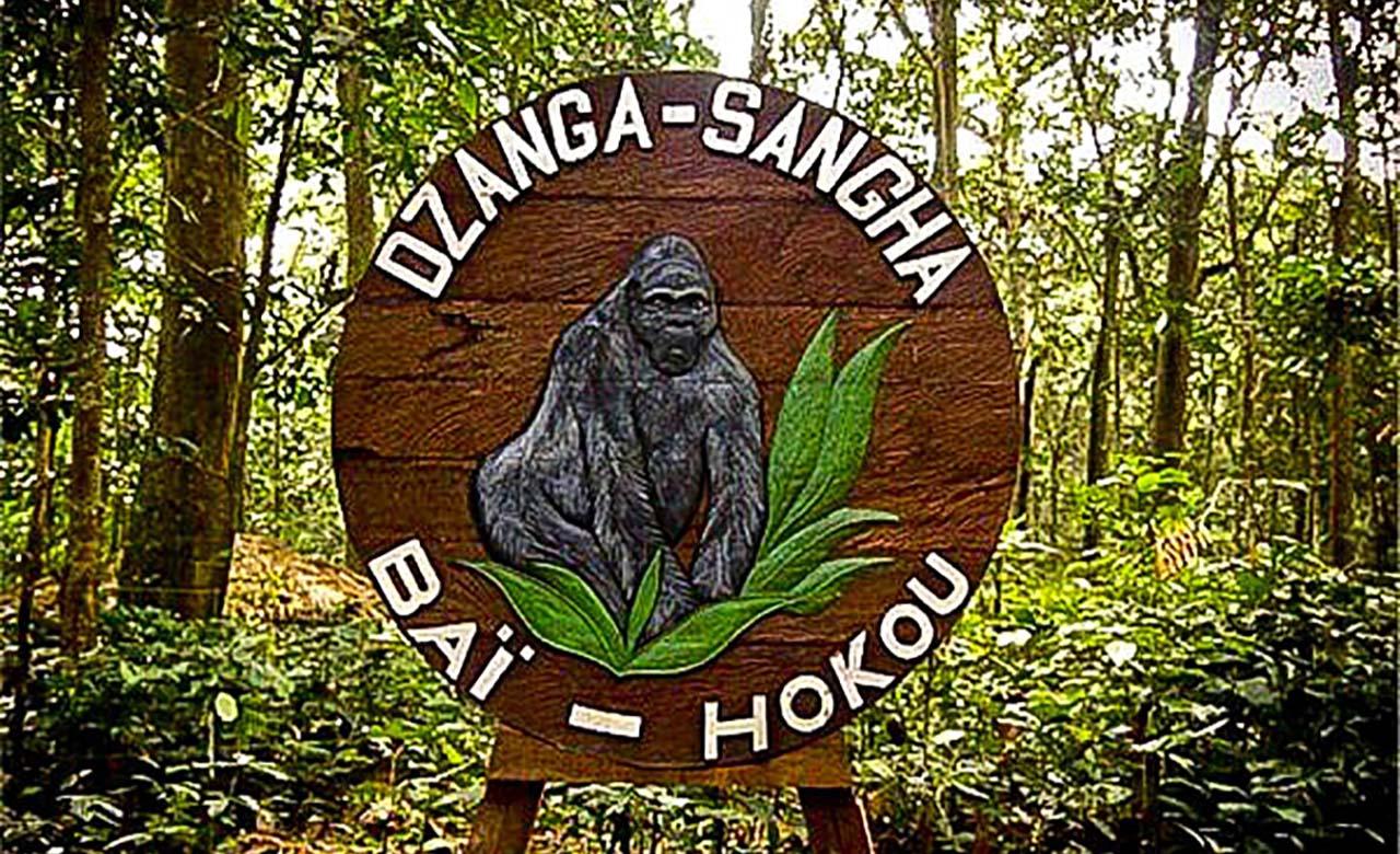 Dzanga-Sangha