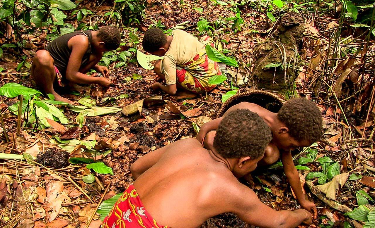 Les peuples Bakas